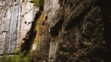 Mack The Knife 5.9